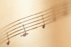 Music notes on paper. Fragment of the A minor gamut Stock Images