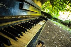About music. Old piano. Old piano stands in the street under a big green tree. Summery Royalty Free Stock Images