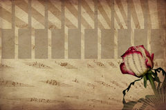 Music and rose. Abstract music notes and rose vintage background royalty free stock photo