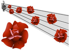 Music of roses Stock Photography