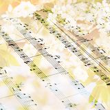 Music sheet against flowering tree- background Stock Image