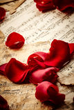 Music sheets with rose petals Stock Photo