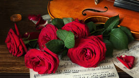 About music. Still life will decorate a living room, dining-room, out-of-town house Royalty Free Stock Photography