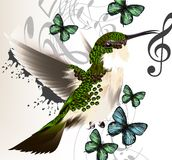 Music vector background with humming bird, butterflies and notes Stock Photos
