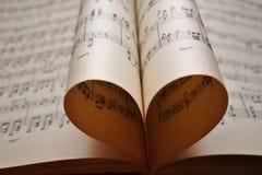 Musica del cuore Fotografia Stock