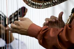 Musica dell'arpa Fotografia Stock