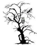 Musica di notte Albero spaventoso del nero di Halloween con i corvi ed il gufo Illustrazione disegnata a mano dell'acquerello e d royalty illustrazione gratis