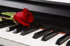 Musica di strato con Rosa sul piano Immagine Stock