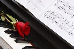 Musica di strato del piano con Rosa Fotografie Stock