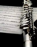Musica dolce. Fotografie Stock Libere da Diritti