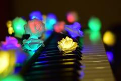 Musica variopinta d'ardore delle rose del piano immagine stock