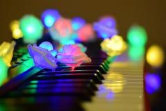 Musica variopinta d'ardore delle rose del piano fotografia stock