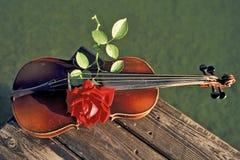 Musica, violine Fotografia Stock