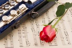 Musical arrangement Royalty Free Stock Image