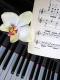Musical background, piano keys with notes Stock Images