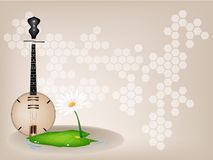 A Musical Brown Dan Nguyet on Brown Stage Backgrou Royalty Free Stock Images