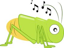 Musical Cricket Stock Images