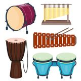 Musical drum wood rhythm music instrument series set of percussion vector illustration. Drummer musician cultural handmade orchestra art performance indigenous Royalty Free Stock Photo
