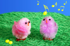 Musical Easter Chicks. Two colored Easter chicks on artificial grass. One of them is twittering. Music notes are flying in the air Stock Images