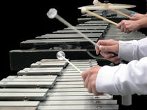 Musical hands. Musicians playing marimba and xylophone Stock Image