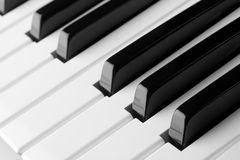Musical instrument. Macro of a piano keyboard Stock Photos