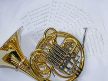 Musical instrument French horn lies on a white background with notes stock images