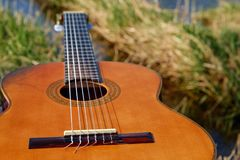 Musical Instrument, Guitar, String Instrument Accessory, Plucked String Instruments