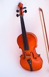 Violin on a white background Stock Photos