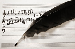 Musical notes and feather. Picture of the musical notes and feather royalty free stock photo
