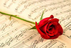 Musical notes and red rose Royalty Free Stock Image