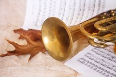 Musical notes and saxophone. Isolated on white stock photography