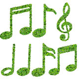 Musical notes, symbol made from green leaves isolated on white background. 3d render Royalty Free Stock Photos