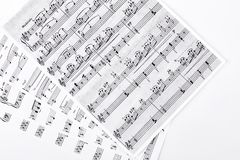 Musical notes on white background. Sheets with  Music and composition concept royalty free stock images
