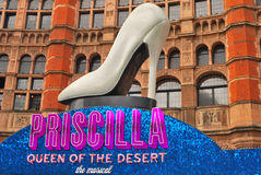 Musical Priscilla Royalty Free Stock Photography
