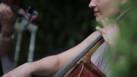 Musical quartet. Girl playing cello in a quartet of violinists. Close up. Musical quartet. Three violinists and cellist playing music stock video footage