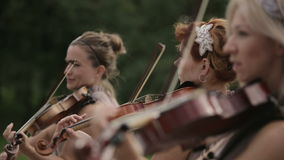 Musical quartet. Three violinists and cellist playing music. Close up. stock footage