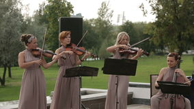 Musical quartet. Three violinists and cellist playing music. Medium shot. Musical quartet. Three violinists and cellist playing music. SESSION KEYWORD stock video