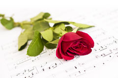 Musical score, and Rose Stock Images