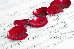 Musical score, and Rose Stock Photos