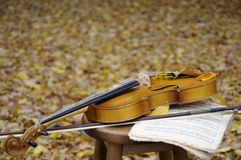 Musical sheet and violin with leaves in background Royalty Free Stock Photos