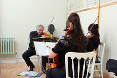 Musical string trio at a wedding. Royalty Free Stock Photos