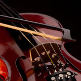 Musical Strings royalty free stock photos