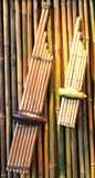 Musical tailandese Fotografie Stock Libere da Diritti