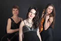 Musical trio portrait Royalty Free Stock Images
