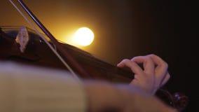 Musicant弹小提琴 股票视频