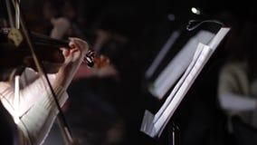 Musicant弹小提琴 股票录像