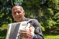 Musician accordion royalty free stock photos