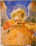 Musician angel Stock Image