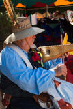 Musician at Arizona Renaissance Festival. Stock Images