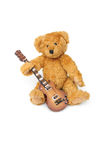 Musician bear Royalty Free Stock Images